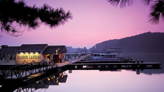 Lake Lanier marinas