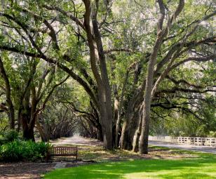 gated communities in Bluffton