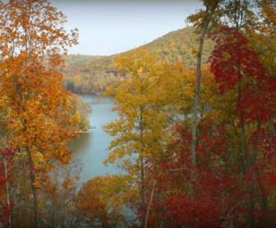 Watts Bar lake property views