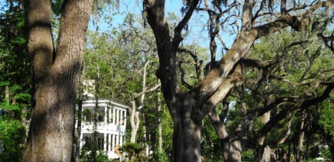 Beaufort County Real Estate New Urbanism