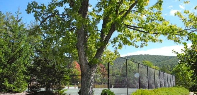 Biltmore Lake Tennis Courts