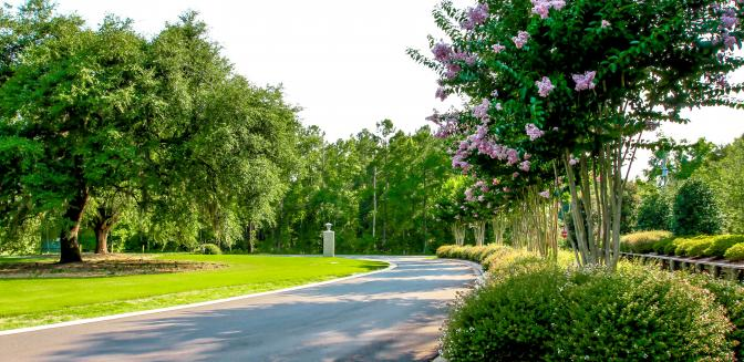 Bluffs On The Cape Fear Curb Appeal