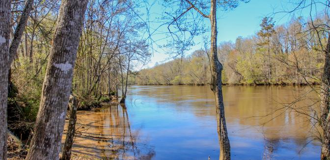 cape fear river fishing access points