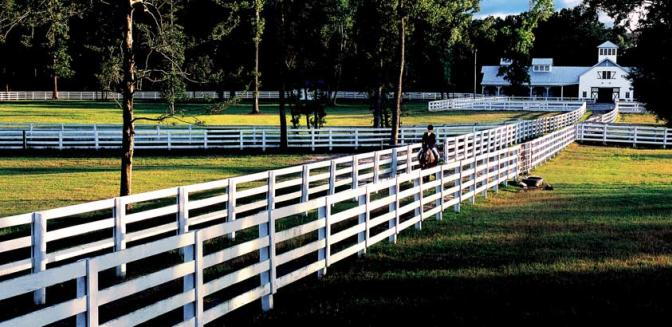 Ford Plantation equestrian center