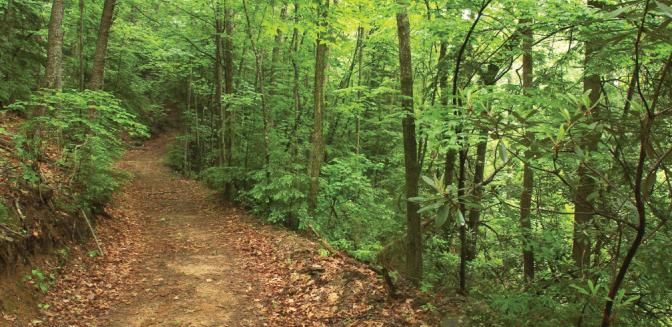 Hendersonville NC Brights Creek Hiking Trails