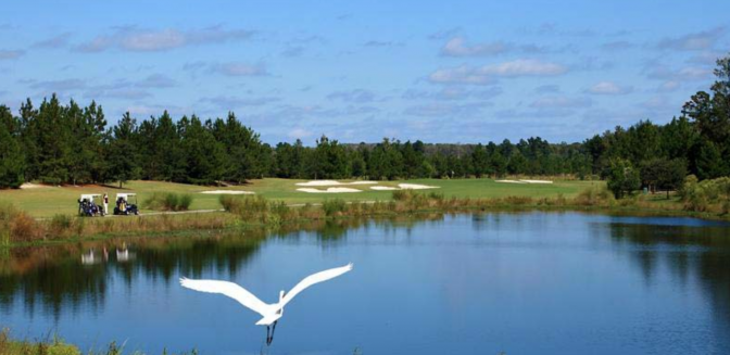 Hilton Head Lakes  Communities SC