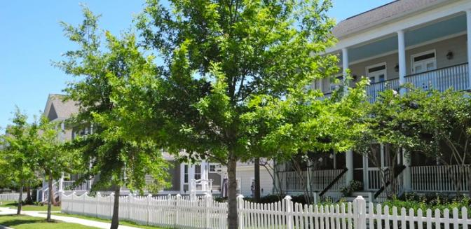 Living In Charleston Rivertowne Curb Appeal