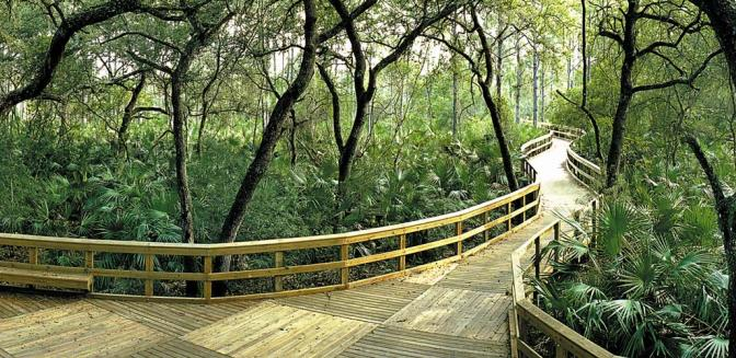 Pelican Preserve WCI Walking Trails
