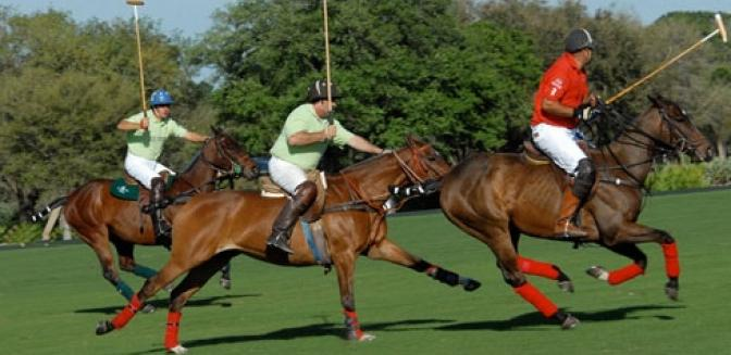 Vero Beach FL Polo