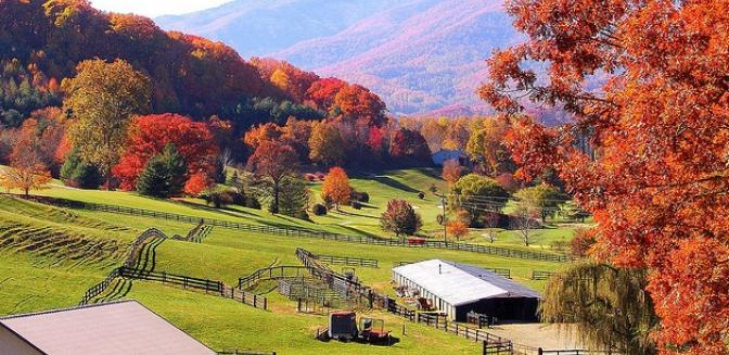 Waynesville North Carolina landscape